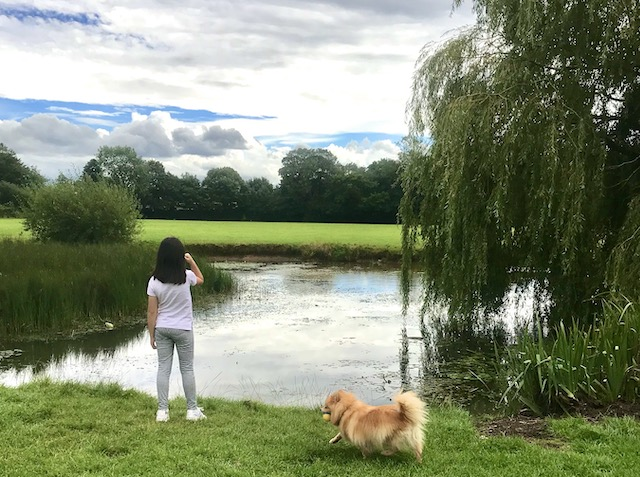 Granddaughter and Rocco near a large pond in the summer