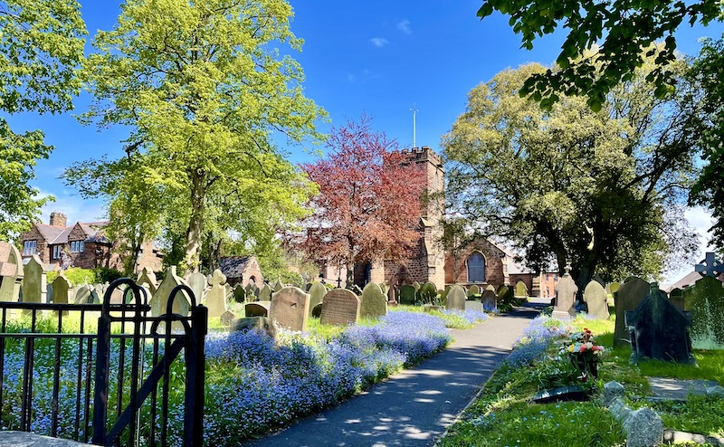 Neston graveyard and church in bright sunshine. Lots of purple flowers around the graves.