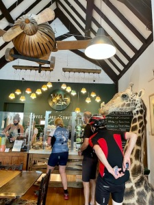 Inside the cafe, queuing for coffee and cake next to a large head of a giraffe!