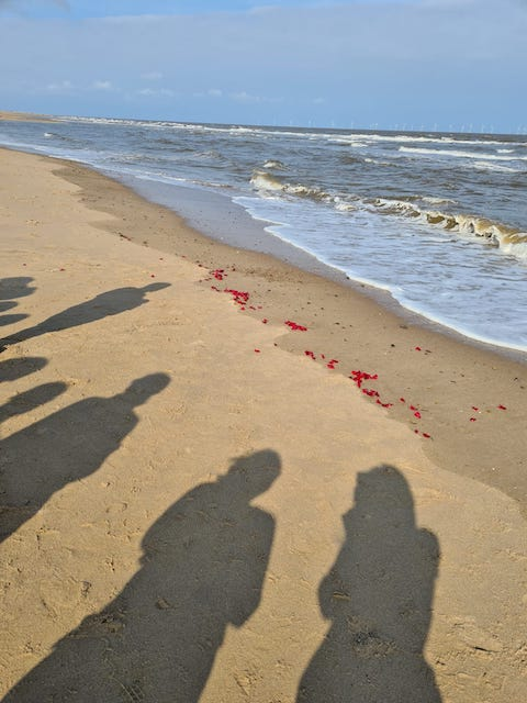 Our shadows on the beach and a row of rose petals where the tide has come in